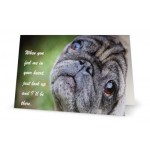 Pet Sympathy Card Gus