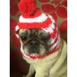 Dog Beanie Sydney