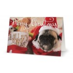 Card - Xmas Lilly X