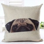 Cushion Peek a Pug 18""