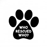 Sticker-Who Rescued Who? Black